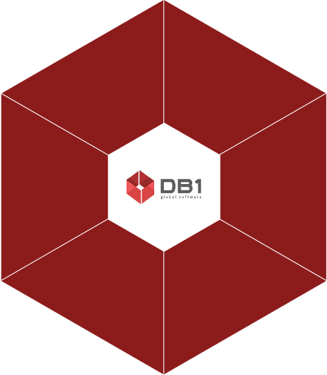 DB1 Global Software
