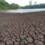 salvar o lago do parque do ingá